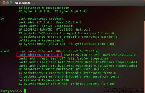 Ubuntu Linux - Find IP Address 1